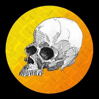 skull002.5